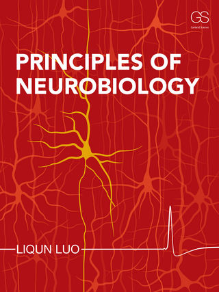 principles of neurobiology 洋書 南江堂