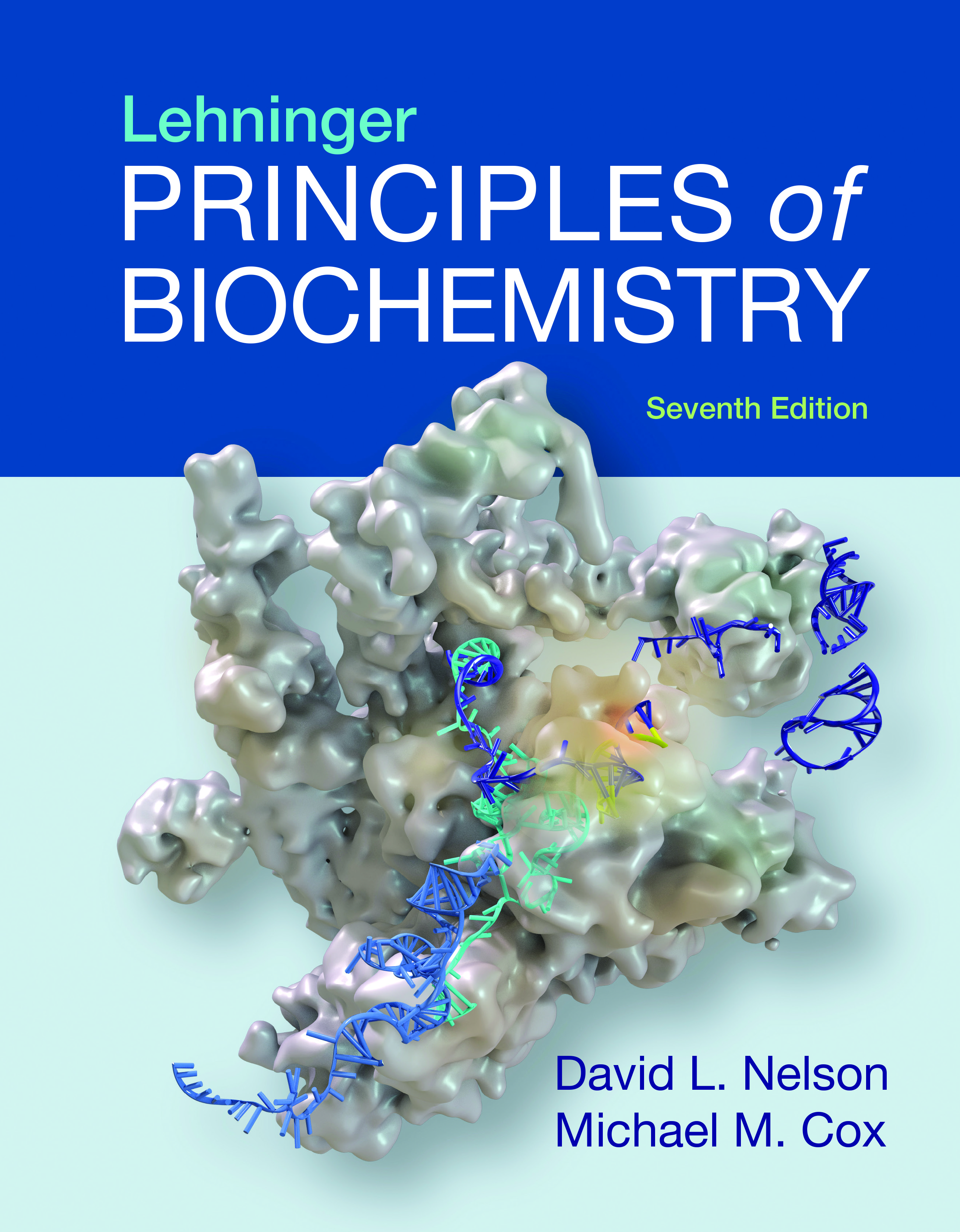 lehninger principles of biochemistry 7th ed us ed 洋書 南江堂